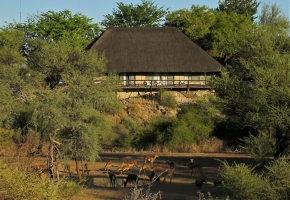 Lodge and game at the water hole